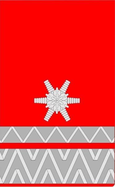 Brandmeister (BM)